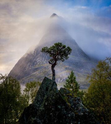 Photo Lars Andreas Dybvik